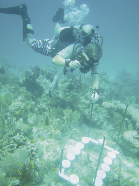 Deep-water research leads to scholarship