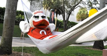 Sebastian the Ibis relaxes in a hammock by Memorial Fountain on Wednesday afternoon. The hammocks are put up around the end of each semester to help try and relax students during finals. Holly Bensyr // Staff Photographer