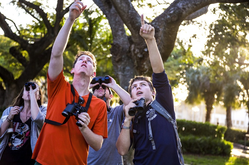 Junior Rebecca Eager, Junior Eric Friedman, Senior Evan Maisel, and Junior Levi Propst, who is the President and Co-Founder of the UM Amateur Ornithological Society, survey the UM campus for birds durning their bi-weekly walk on Wednesday afternoon. Nick Gangemi // Assistant Photo Editor