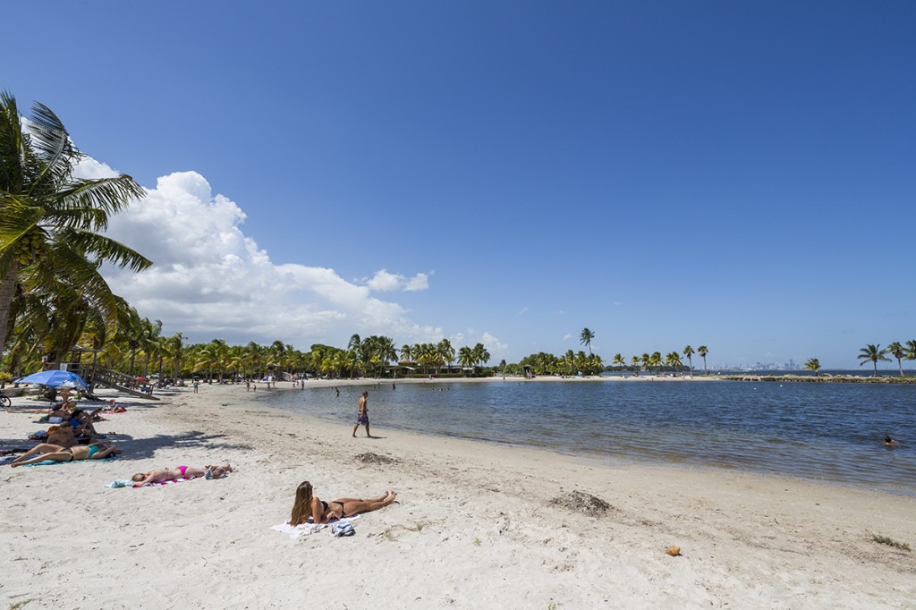 The beach lagoon at Matheson Hammock Park provides the perfect beach getaway without the need for a long car trip. Nick Gangemi // Photo Editor