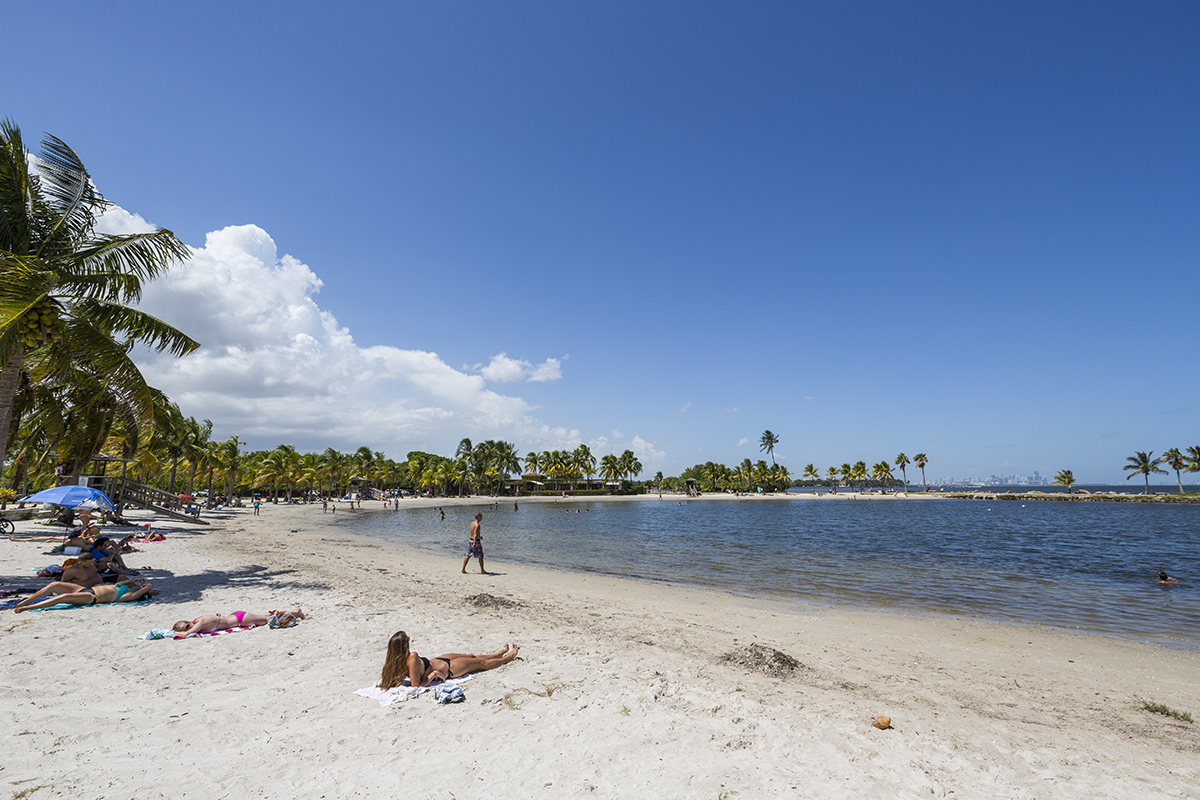 The Beach Lagoon At Matheson Hammock Park Provides Perfect Getaway Without Need For