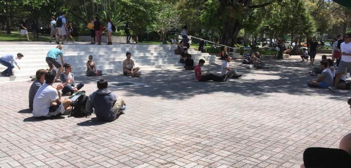 Meditation flash mob promotes peace