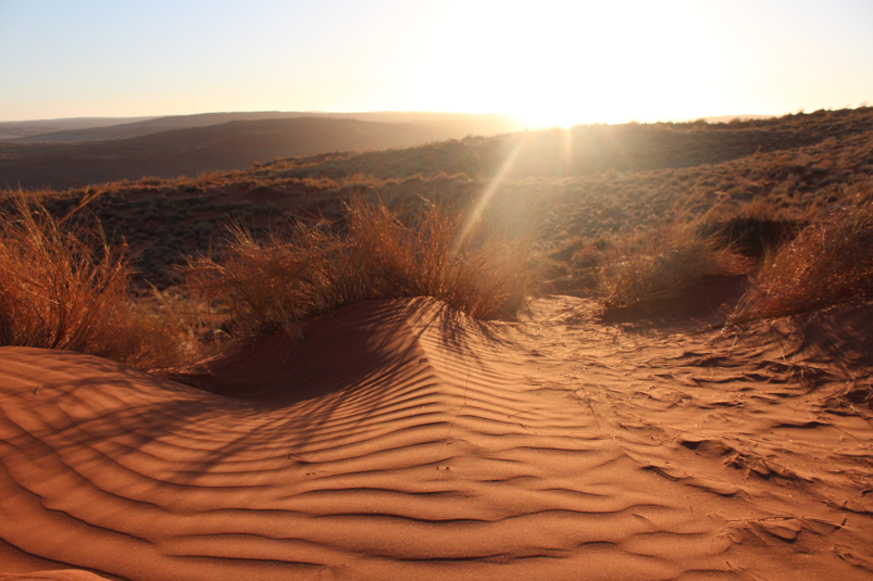 Miami Globe Trotter: Namib Desert is anything but empty