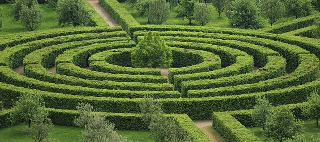 U Musings: Cox Science Building resembles hedge maze