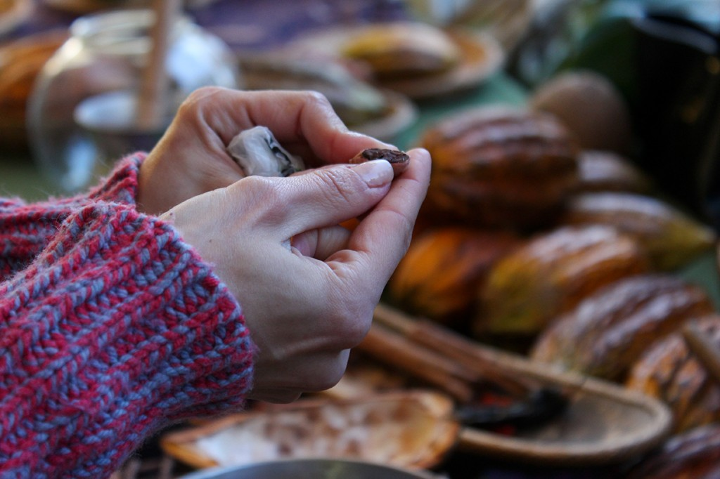 During a demonstration Saturday at the 10th Annual International Chocolate Festival, a Fairchild Tropical Gardens volunteer breaks open a cacao bean for attendees to view its composition. Hallee Meltzer // Photo Editor