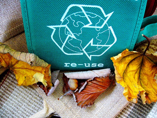 Florida schools face off in Recyclemania competition