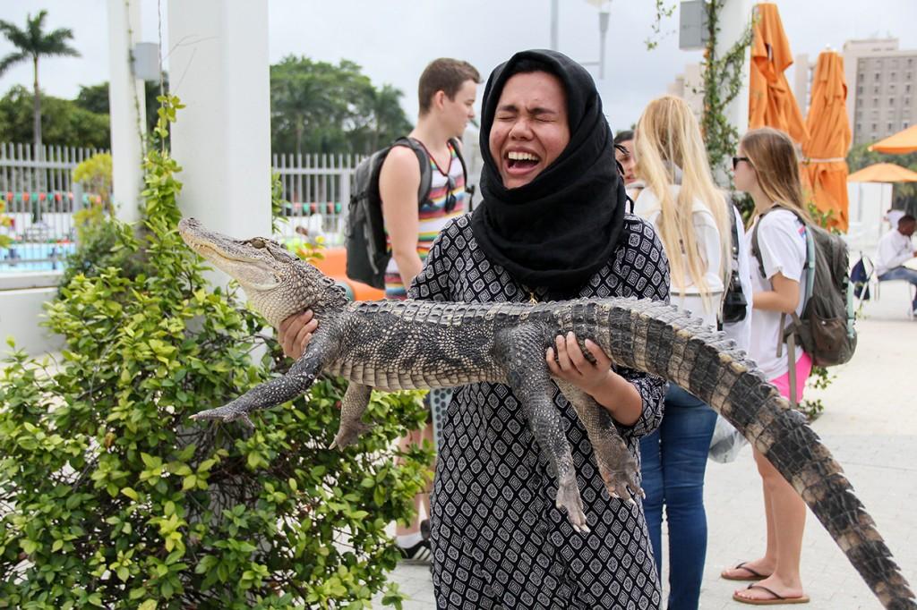 Photo of the Week: 'See ya later, alligator'