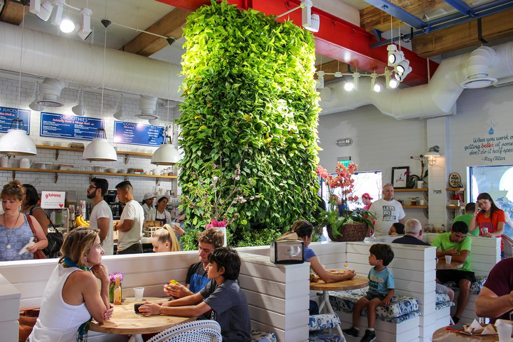 Grown serves healthy, organic fast-food in a family-friendly environment. Hallee Meltzer // Photo Editor
