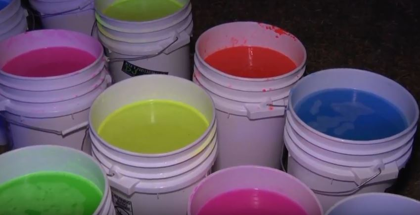 VIDEO: First EDM paint party held on UM campus