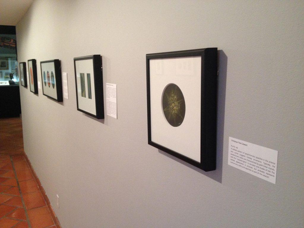Exhibit shows medicine through artistic lens