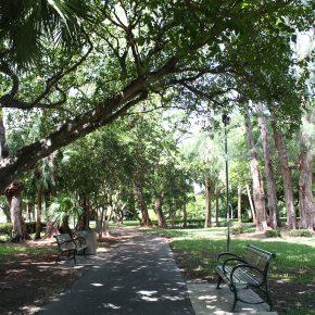 pinetree-park_hm