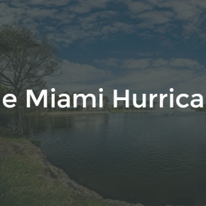 Generic TMH (The Miami Hurricane) Logo and Image.
