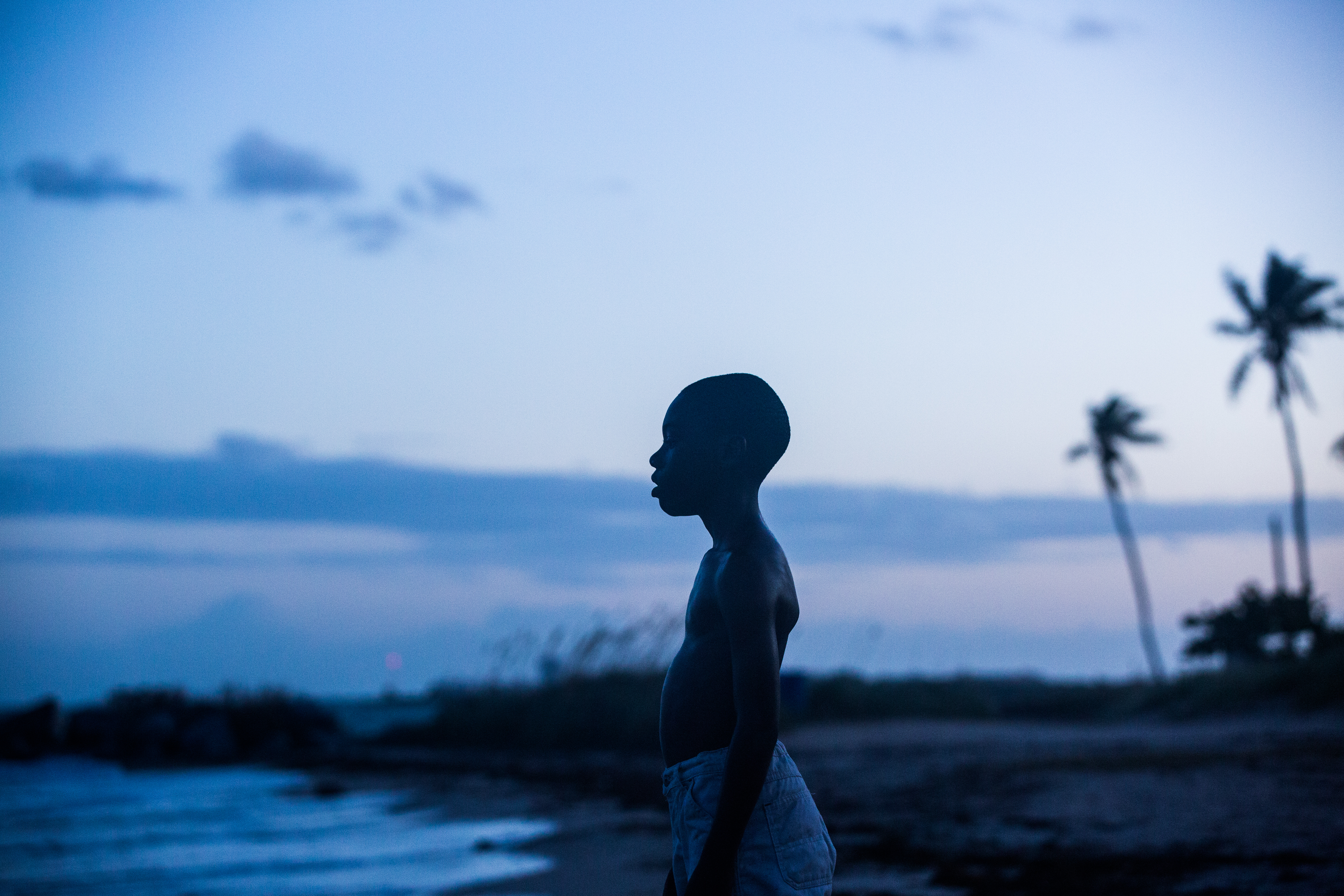 'Moonlight' depicts vivid, honest coming-of-age story
