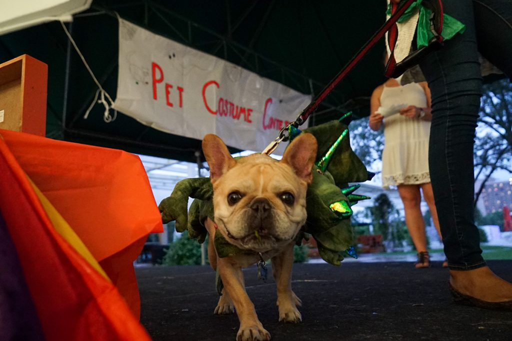 Pre-Vet Society Pet Costume Contest Thursday, October 28, 2016 Hunter Crenian // Staff Photographer