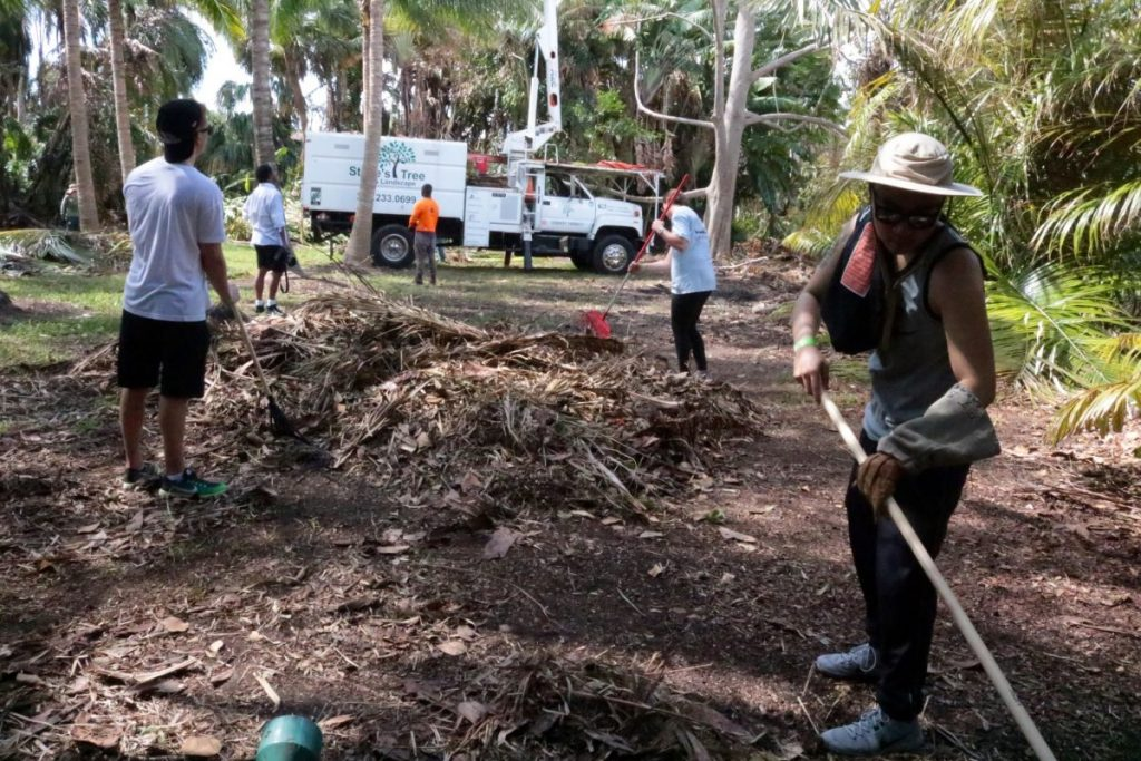 Hurricane Irma Relief Day of Service provides UM community opportunity to help in recovery efforts