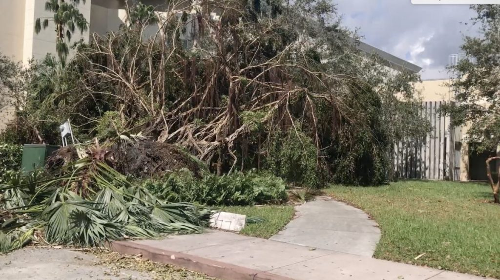 VIDEO: Hurricane Irma's damage on Coral Gables campus
