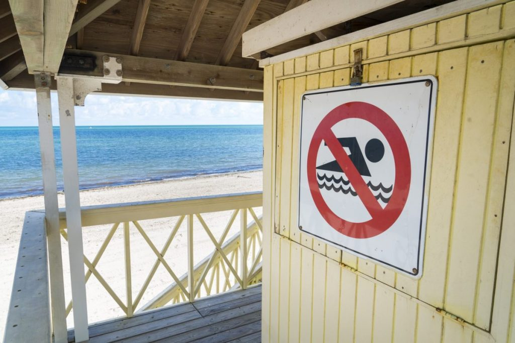 Red tide closes beaches in Miami