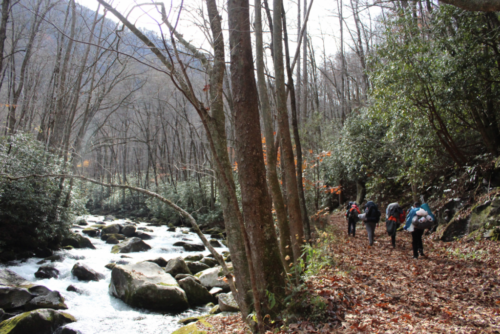 UAstronomy Club spends Thanksgiving break hiking the Great Smoky Mountains