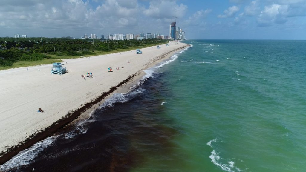Sewage, dangerous bacteria are entering oceans, closing Miami beaches