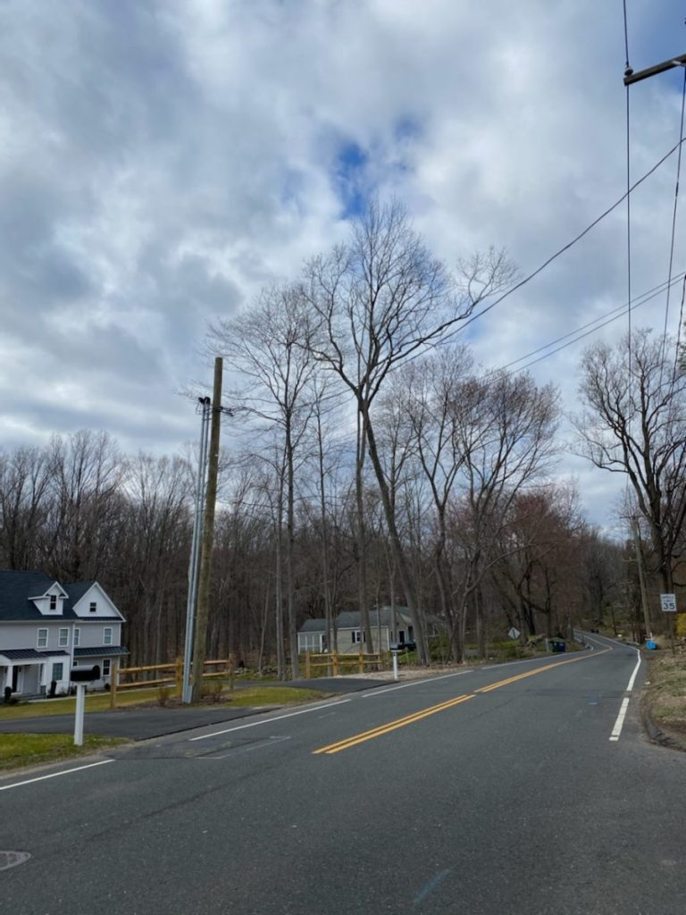 Route 108 – 'The change has been insane'