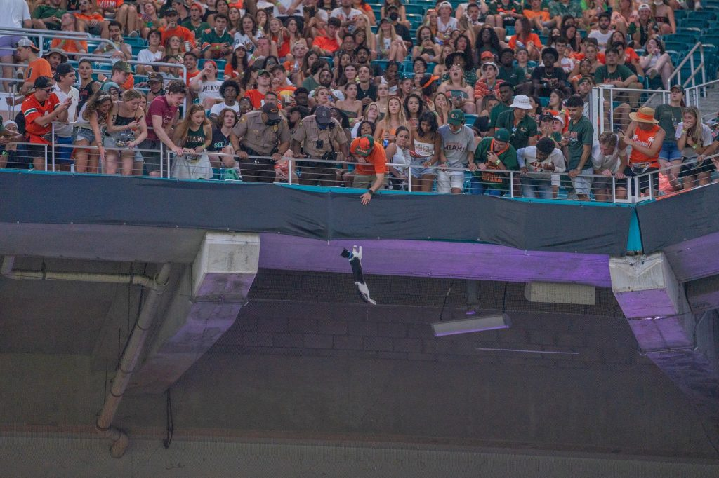 A cat clings on to a wire below the 300 level seats during the first half of Miami's game versus Appalachian State at Hard Rock Stadium on Sept. 11, 2021.